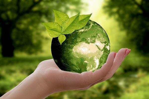 Discover the advantages of biorational fertilizers